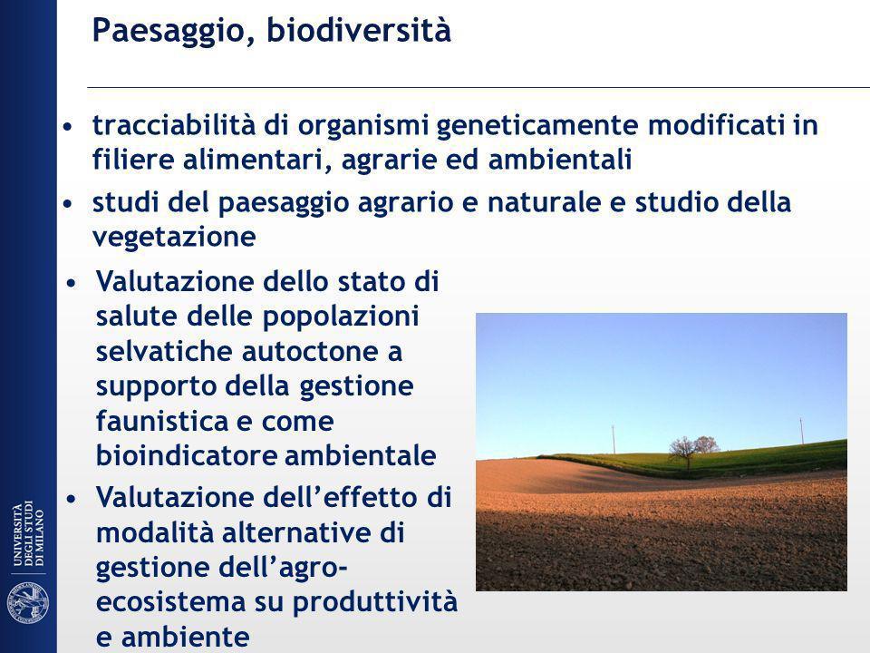 Paesaggio, biodiversità tracciabilità di organismi geneticamente modificati in filiere alimentari, agrarie ed ambientali studi del paesaggio agrario e