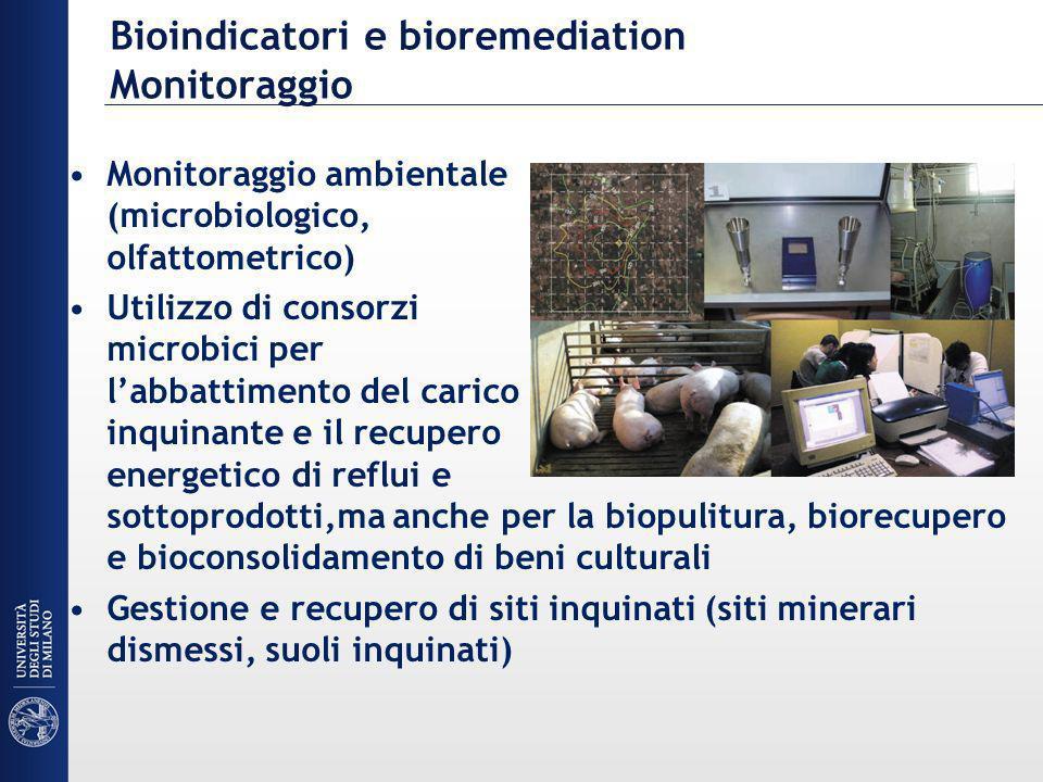 Bioindicatori e bioremediation Monitoraggio Monitoraggio ambientale (microbiologico, olfattometrico) Utilizzo di consorzi microbici per labbattimento