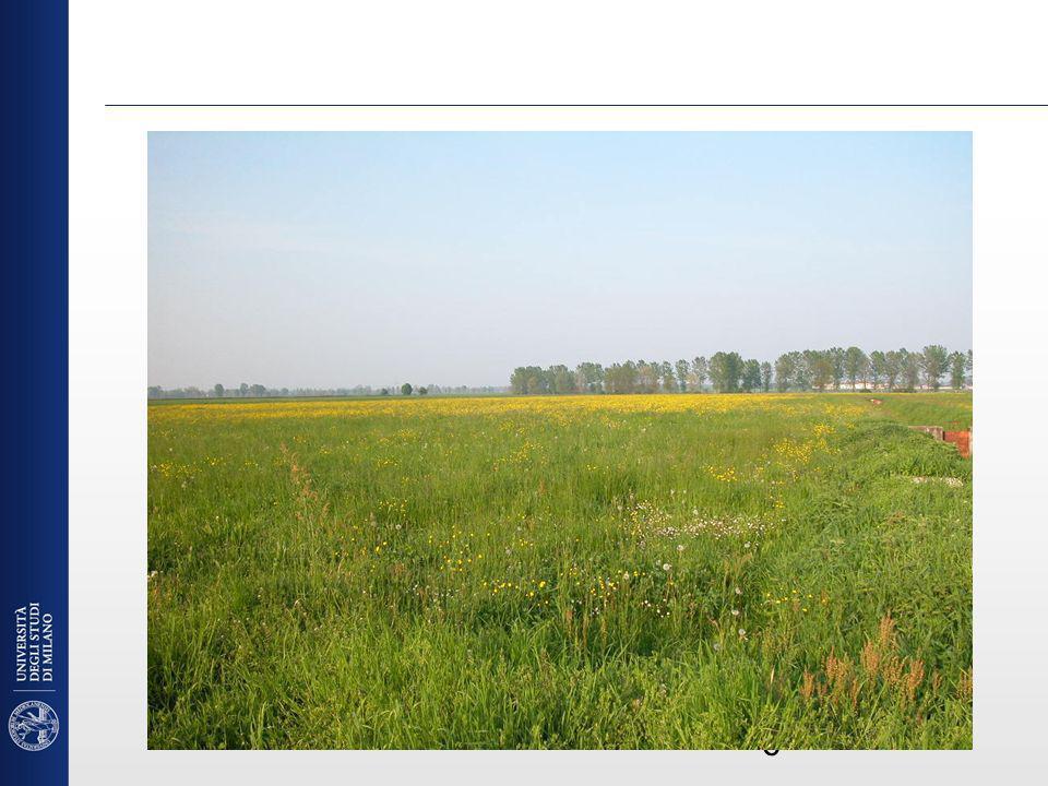 Valorizzazione residui ed effluenti e riduzione delle emissioni Riciclo sostenibile di rifiuti urbani e biomasse e loro caratterizzazione a fini energetici Sostenibilità energetica delle attività agricole Tecniche sostenibili per la gestione aziendale e comprensoriale degli effluenti di allevamento