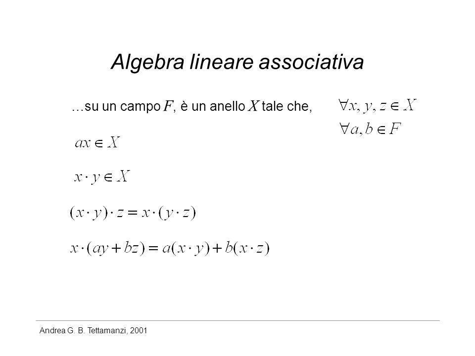 Andrea G. B. Tettamanzi, 2001 Algebra lineare associativa …su un campo F, è un anello X tale che,