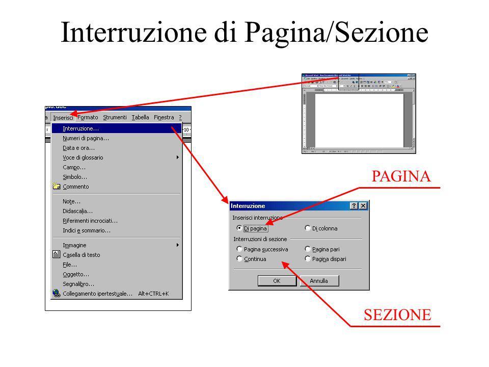 Interruzione di Pagina/Sezione PAGINA SEZIONE
