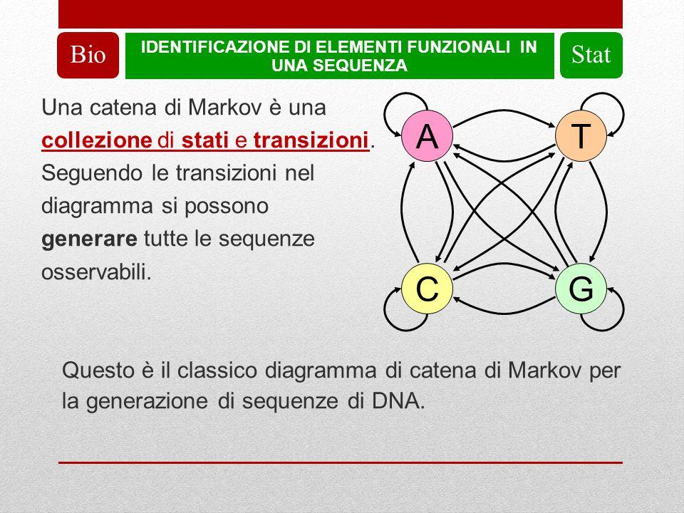 IDENTIFICAZIONE DI ELEMENTI FUNZIONALI IN UNA SEQUENZA BioStat Una catena di Markov è una collezione di stati e transizioni.