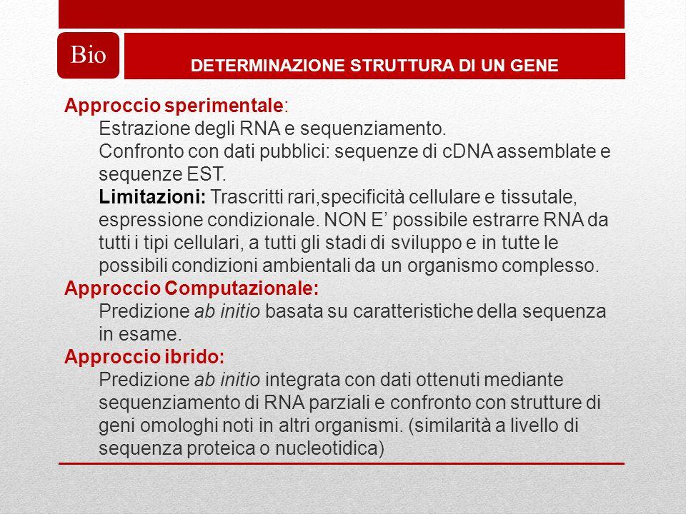 DETERMINAZIONE STRUTTURA DI UN GENE Bio Approccio sperimentale: Estrazione degli RNA e sequenziamento.