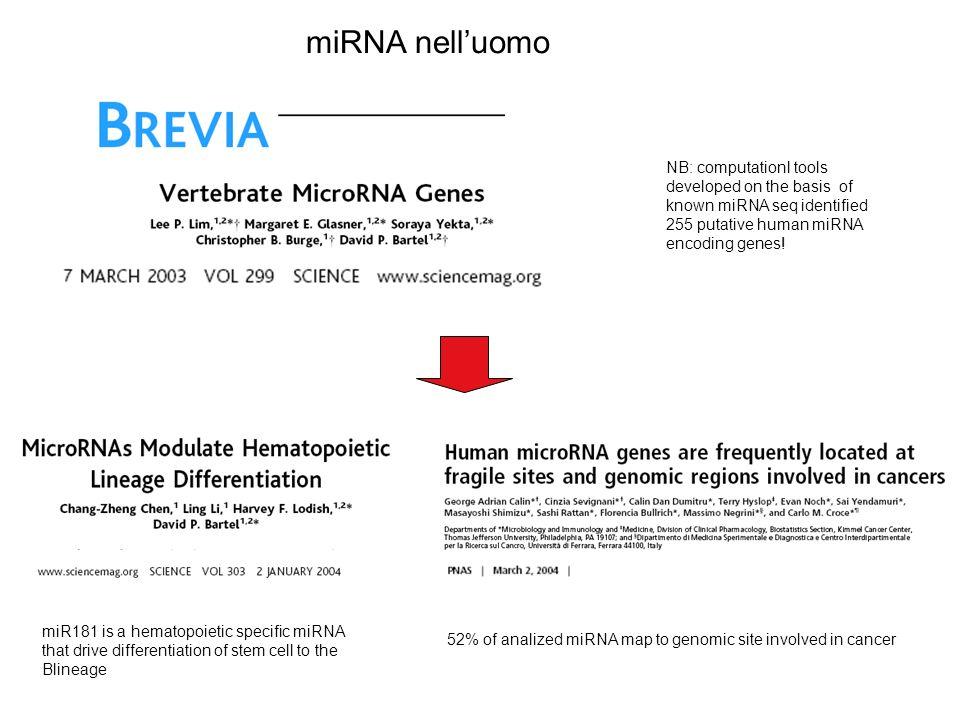 NB: computationl tools developed on the basis of known miRNA seq identified 255 putative human miRNA encoding genes.
