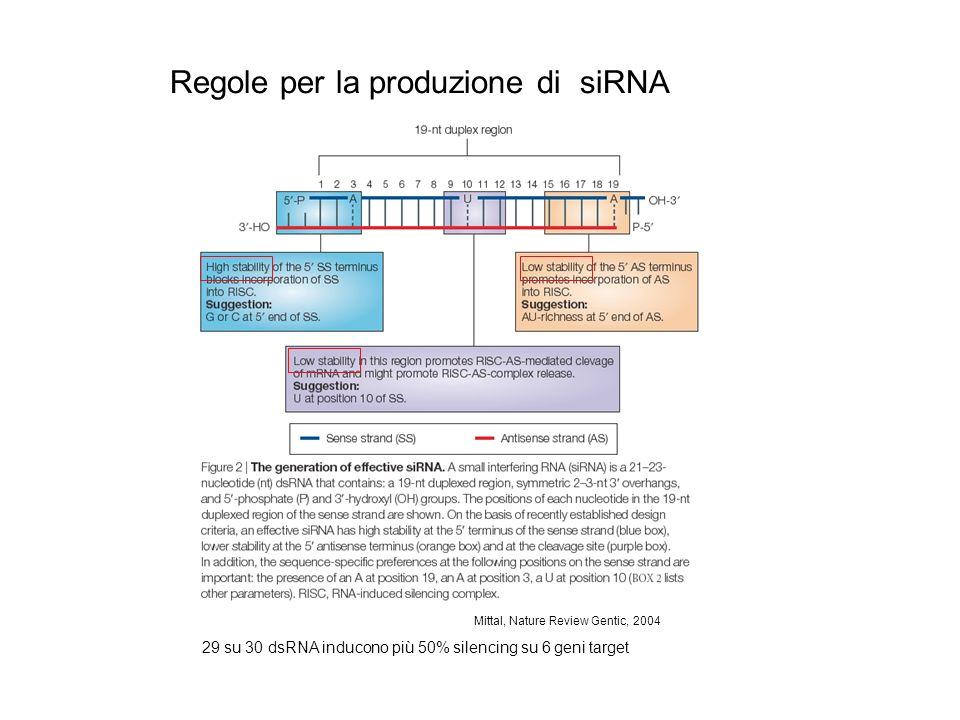 Mittal, Nature Review Gentic, 2004 Regole per la produzione di siRNA 29 su 30 dsRNA inducono più 50% silencing su 6 geni target