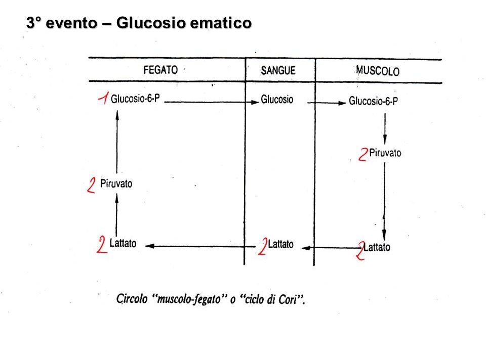 3° evento – Glucosio ematico