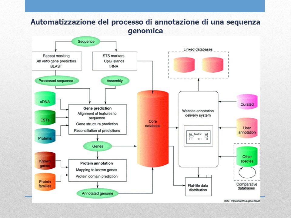 Automatizzazione del processo di annotazione di una sequenza genomica
