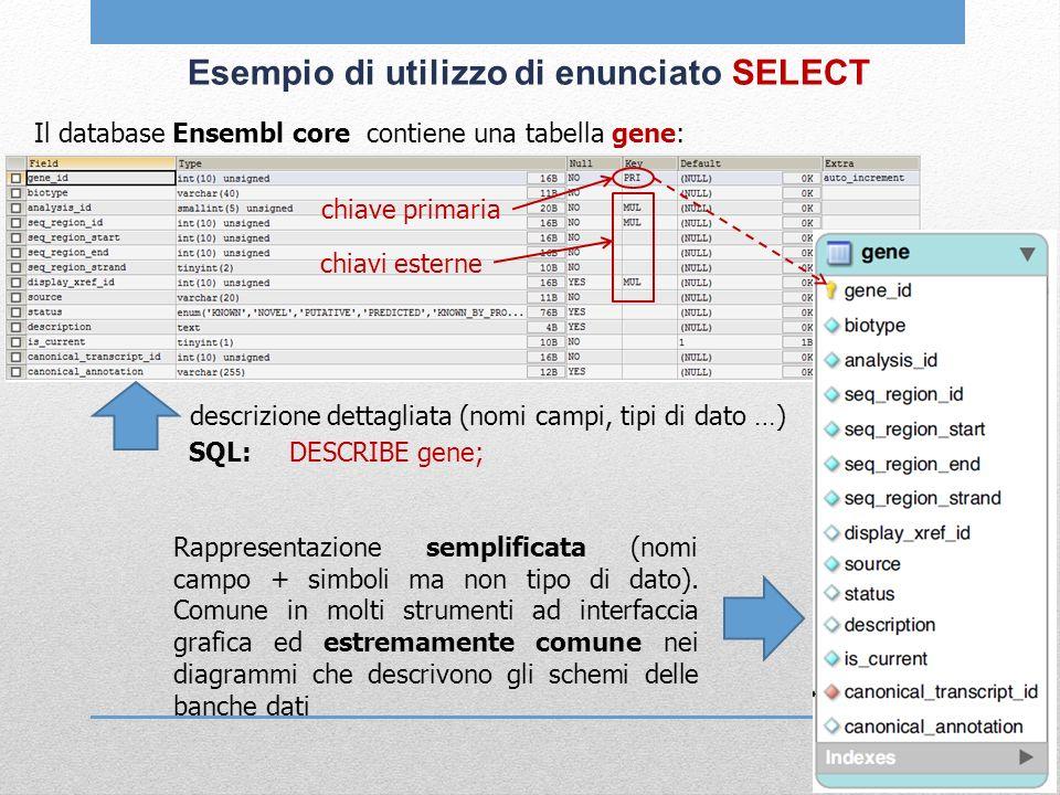 Esempio di utilizzo di enunciato SELECT Il database Ensembl core contiene una tabella gene: descrizione dettagliata (nomi campi, tipi di dato …) SQL: