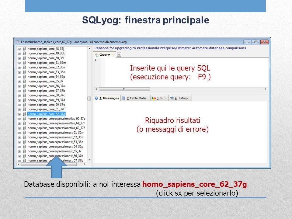SQLyog: finestra principale Database disponibili: a noi interessa homo_sapiens_core_62_37g (click sx per selezionarlo) Inserite qui le query SQL (esec