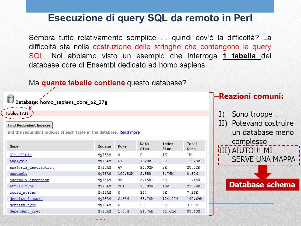 Esecuzione di query SQL da remoto in Perl Sembra tutto relativamente semplice … quindi dovè la difficoltà? La difficoltà sta nella costruzione delle s