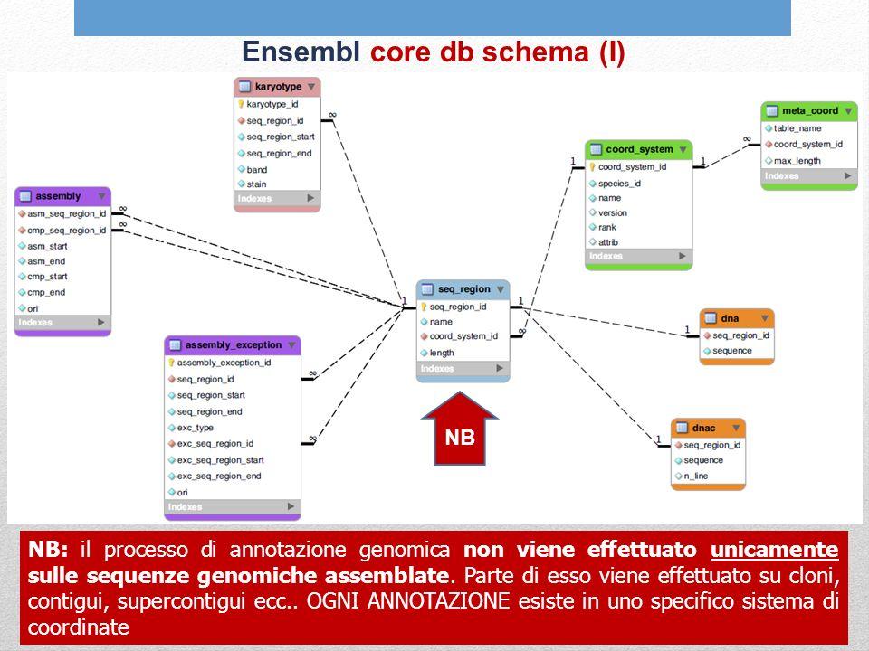 Ensembl core db schema (I) NB: il processo di annotazione genomica non viene effettuato unicamente sulle sequenze genomiche assemblate. Parte di esso