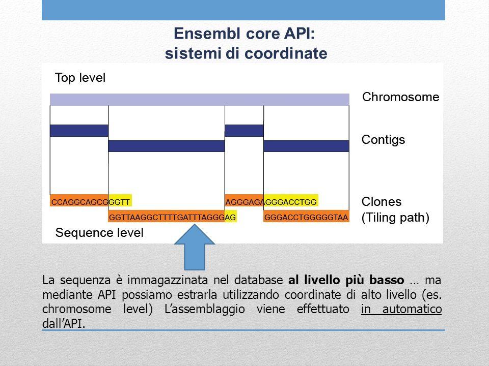 Ensembl core API: sistemi di coordinate La sequenza è immagazzinata nel database al livello più basso … ma mediante API possiamo estrarla utilizzando