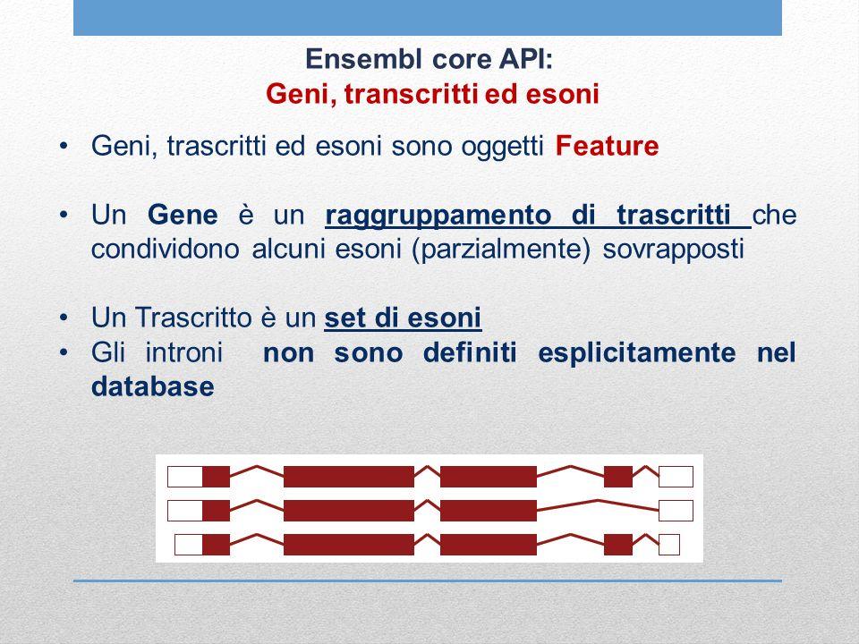 Ensembl core API: Geni, transcritti ed esoni Geni, trascritti ed esoni sono oggetti Feature Un Gene è un raggruppamento di trascritti che condividono