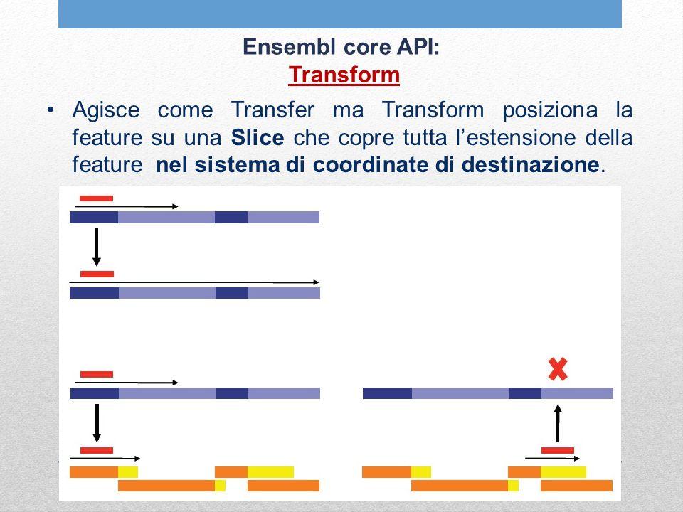 Ensembl core API: Transform Agisce come Transfer ma Transform posiziona la feature su una Slice che copre tutta lestensione della feature nel sistema