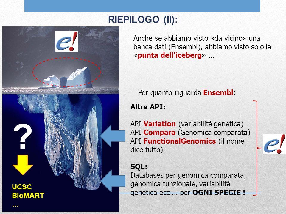 RIEPILOGO (II): Anche se abbiamo visto «da vicino» una banca dati (Ensembl), abbiamo visto solo la «punta delliceberg» … Per quanto riguarda Ensembl: