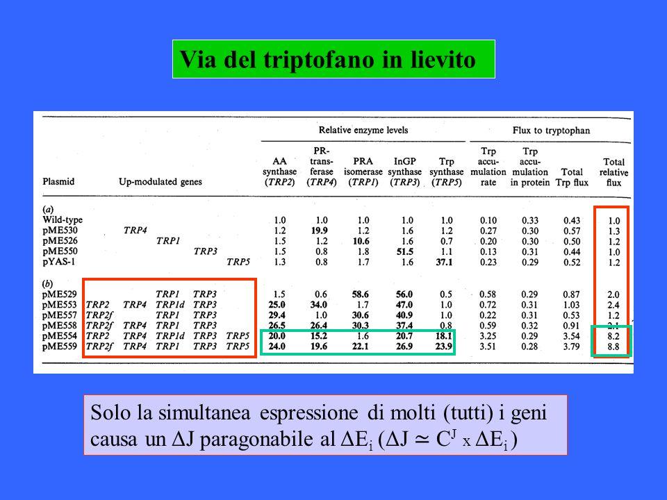 Via del triptofano in lievito Solo la simultanea espressione di molti (tutti) i geni causa un ΔJ paragonabile al ΔE i (ΔJ C J x ΔE i )