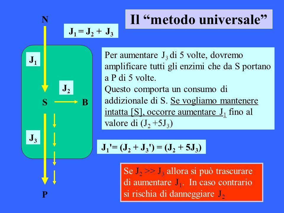 Il metodo universale N S P B J 1 = J 2 + J 3 J1J1 J2J2 J3J3 Per aumentare J 3 di 5 volte, dovremo amplificare tutti gli enzimi che da S portano a P di