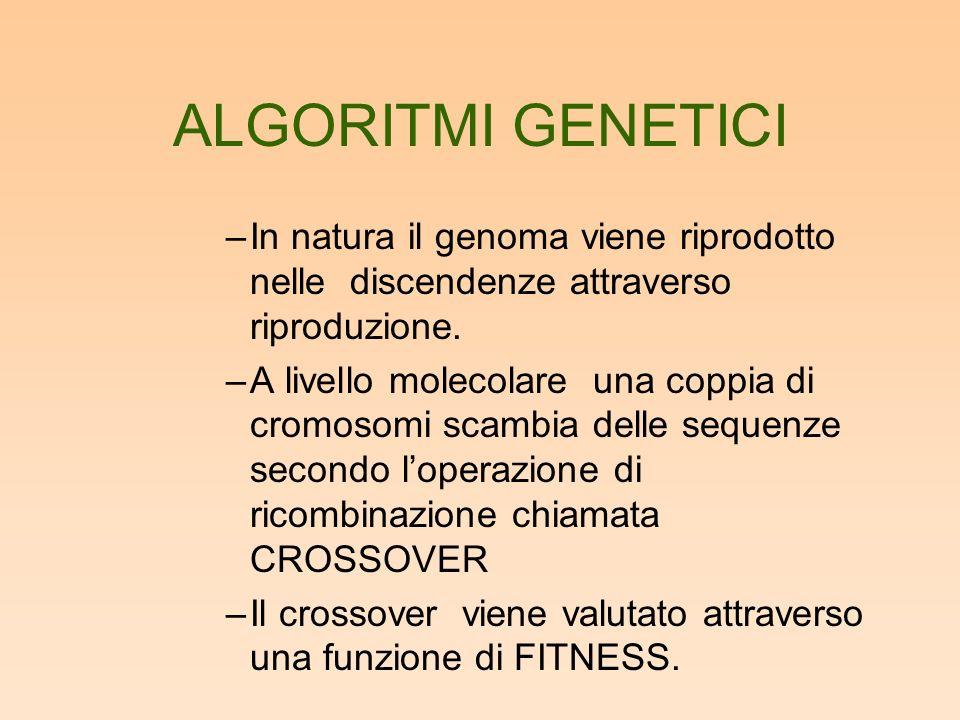 ALGORITMI GENETICI –In natura il genoma viene riprodotto nelle discendenze attraverso riproduzione. –A livello molecolare una coppia di cromosomi scam