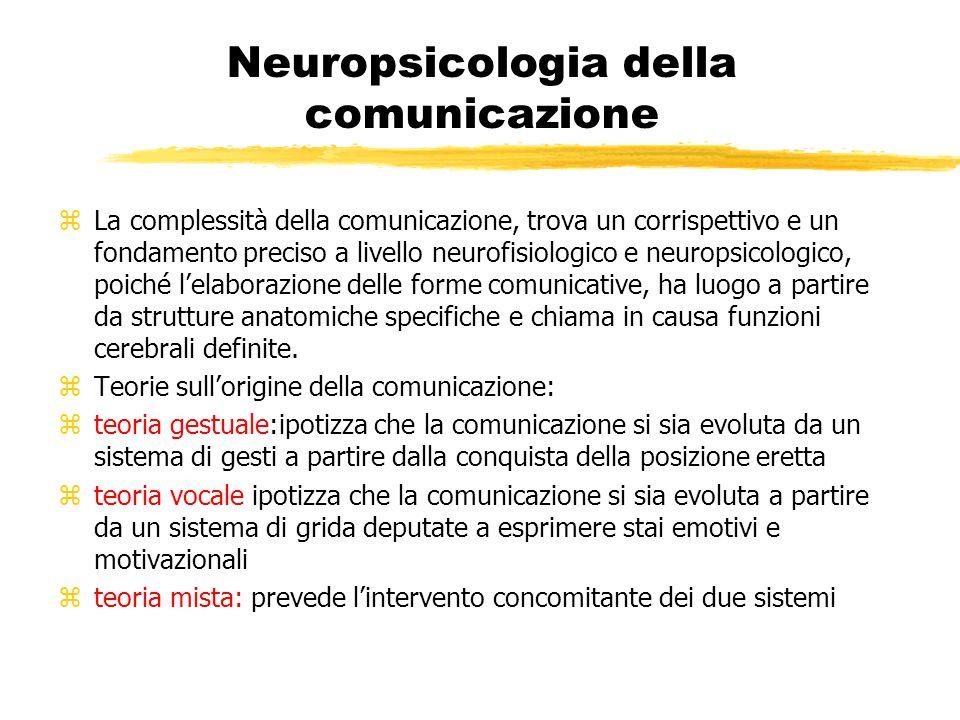 Neuropsicologia della comunicazione zLa complessità della comunicazione, trova un corrispettivo e un fondamento preciso a livello neurofisiologico e n