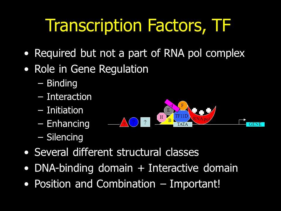 Pierce, GENETICA, Zanichelli editore S.p.A. Copyright © 2005 Transcription Factors, TF Required but not a part of RNA pol complex Role in Gene Regulat