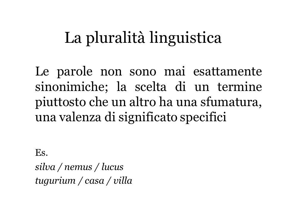 La pluralità linguistica Le parole non sono mai esattamente sinonimiche; la scelta di un termine piuttosto che un altro ha una sfumatura, una valenza