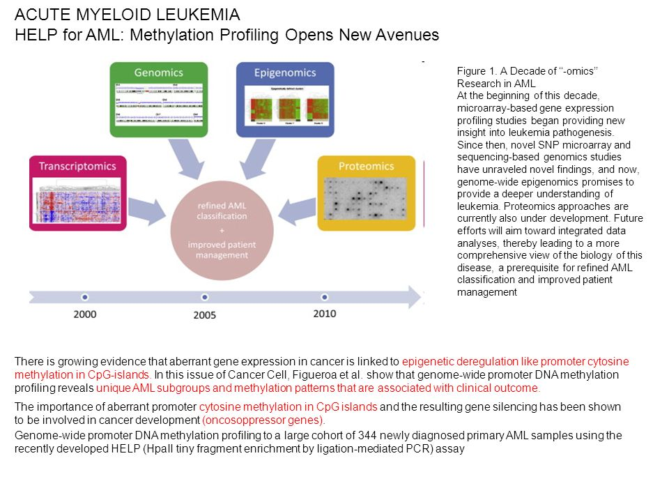 ACUTE MYELOID LEUKEMIA HELP for AML: Methylation Profiling Opens New Avenues There is growing evidence that aberrant gene expression in cancer is link