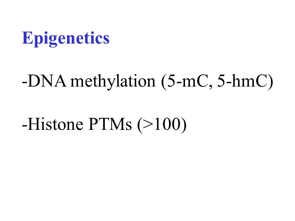 Epigenetics -DNA methylation (5-mC, 5-hmC) -Histone PTMs (>100)
