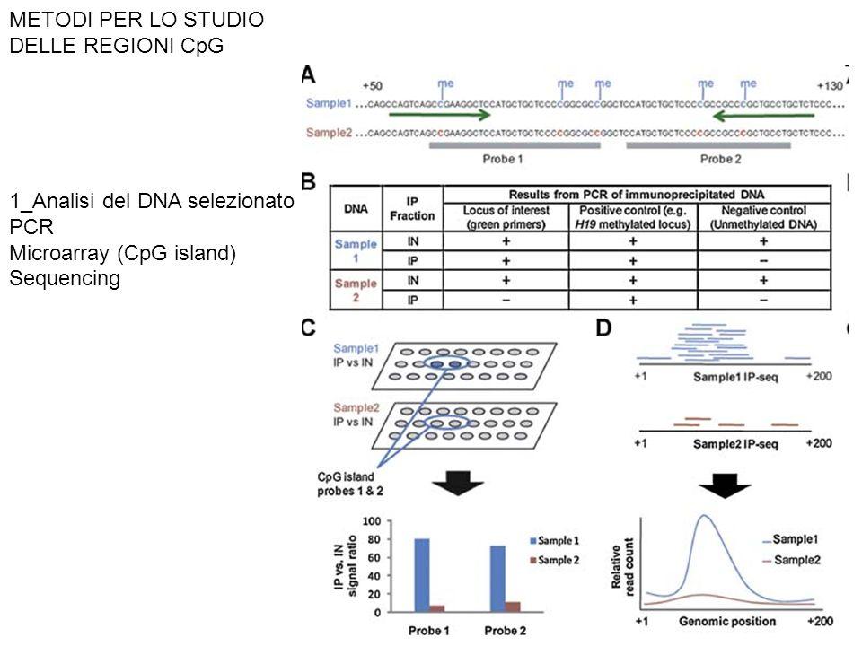 METODI PER LO STUDIO DELLE REGIONI CpG 1_Analisi del DNA selezionato PCR Microarray (CpG island) Sequencing