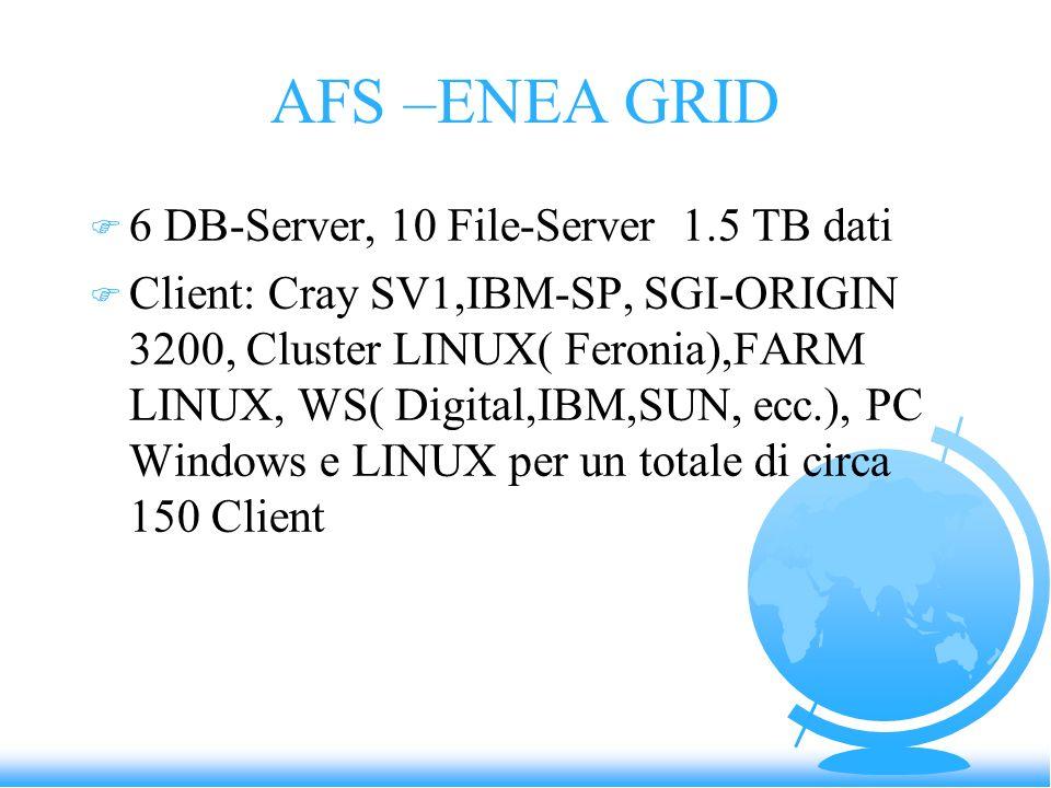 AFS –ENEA GRID F 6 DB-Server, 10 File-Server 1.5 TB dati F Client: Cray SV1,IBM-SP, SGI-ORIGIN 3200, Cluster LINUX( Feronia),FARM LINUX, WS( Digital,I