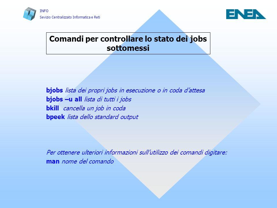 INFO Sevizio Centralizzato Informatica e Reti Casaccia, 5, 06, 2002 Infrastrutture e Servizi per il Calcolo Scientifico FRASCATI 42 Ulteriori informazioni
