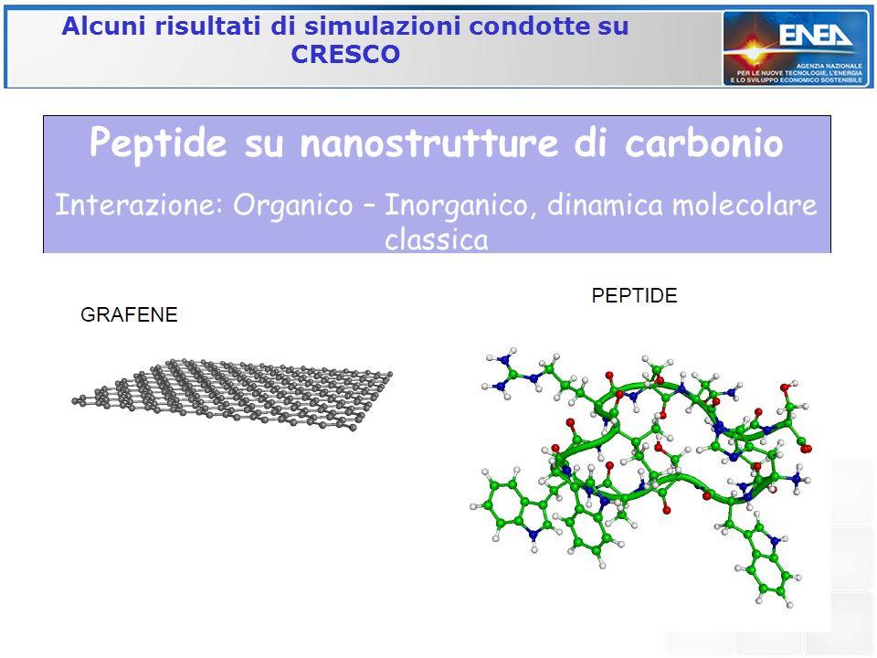 Peptide su nanostrutture di carbonio Interazione: Organico – Inorganico, dinamica molecolare classica Alcuni risultati di simulazioni condotte su CRES