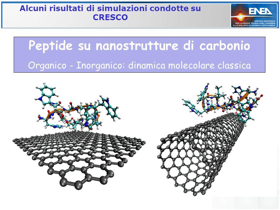 Peptide su nanostrutture di carbonio Organico - Inorganico: dinamica molecolare classica