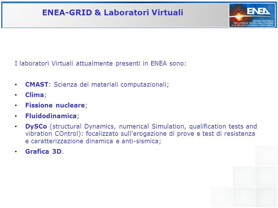 I laboratori Virtuali attualmente presenti in ENEA sono: CMAST: Scienza dei materiali computazionali; Clima; Fissione nucleare; Fluidodinamica; DySCo