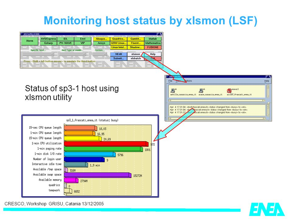 CRESCO, Workshop GRISU, Catania 13/12/2005 Monitoring host status by xlsmon (LSF) Status of sp3-1 host using xlsmon utility