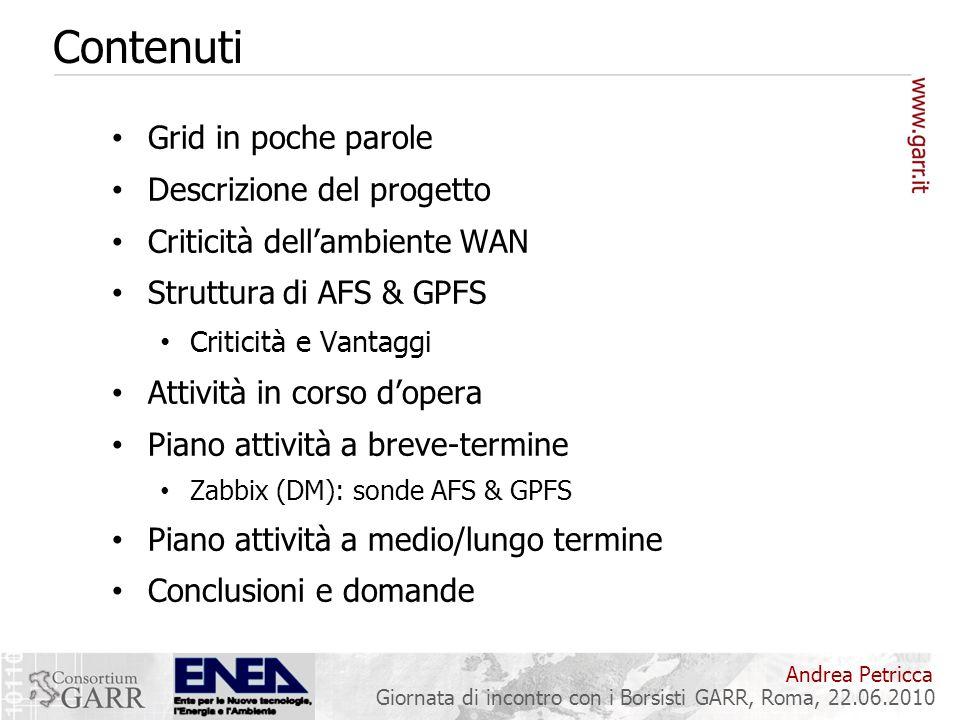 Andrea Petricca Giornata di incontro con i Borsisti GARR, Roma, 22.06.2010 Contenuti Grid in poche parole Descrizione del progetto Criticità dellambie
