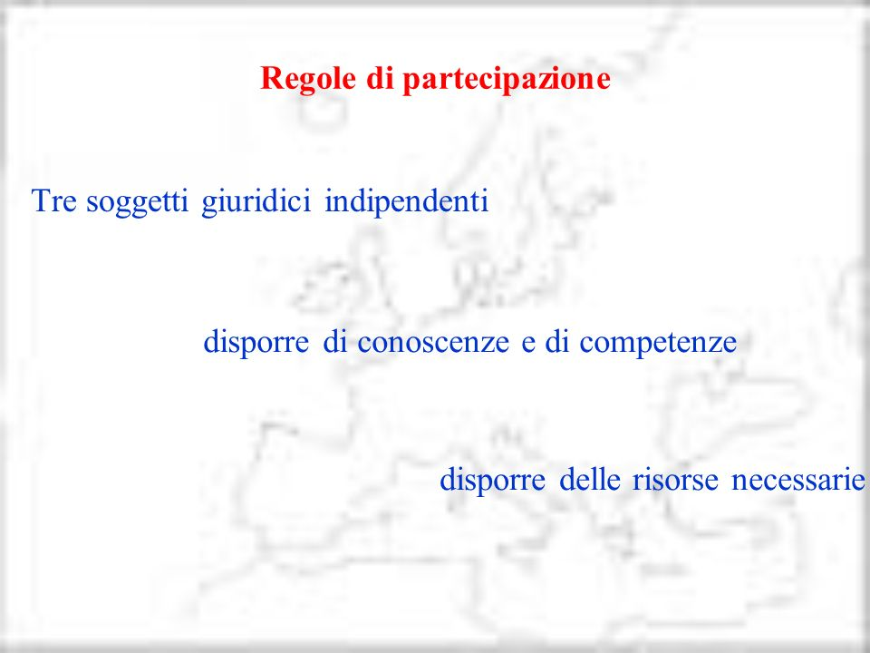 Regole di partecipazione disporre di conoscenze e di competenze disporre delle risorse necessarie Tre soggetti giuridici indipendenti