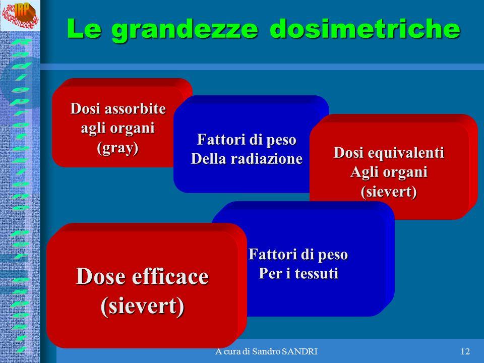 A cura di Sandro SANDRI12 Dosi assorbite agli organi (gray) Fattori di peso Della radiazione Dosi equivalenti Agli organi (sievert) Fattori di peso Pe