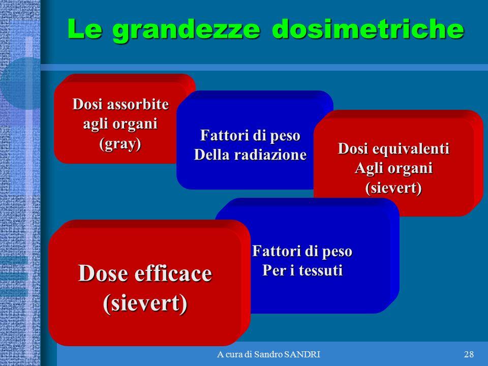 A cura di Sandro SANDRI28 Dosi assorbite agli organi (gray) Fattori di peso Della radiazione Dosi equivalenti Agli organi (sievert) Fattori di peso Pe