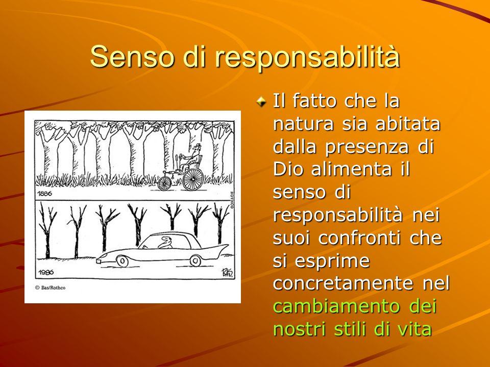 Senso di responsabilità Il fatto che la natura sia abitata dalla presenza di Dio alimenta il senso di responsabilità nei suoi confronti che si esprime