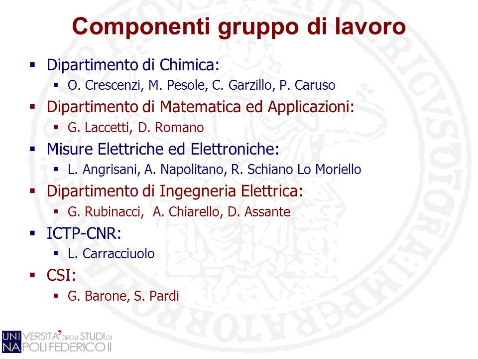 Componenti gruppo di lavoro Dipartimento di Chimica: O. Crescenzi, M. Pesole, C. Garzillo, P. Caruso Dipartimento di Matematica ed Applicazioni: G. La