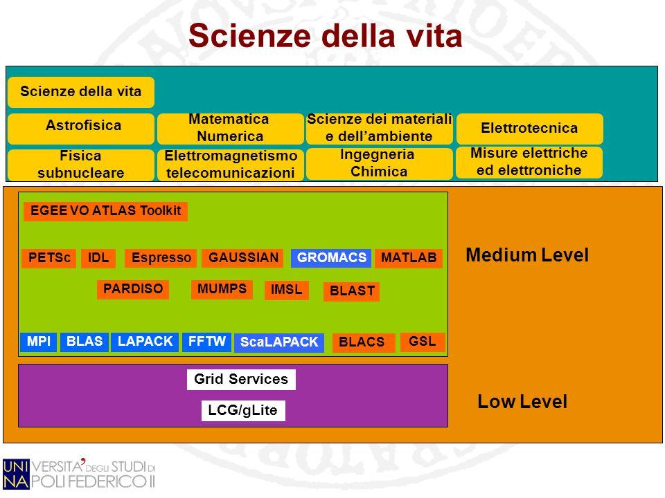 Scienze della vita Grid Services LCG/gLite GSL Fisica subnucleare EGEE VO ATLAS Toolkit MPIBLASLAPACK PETSc Matematica Numerica Elettromagnetismo tele