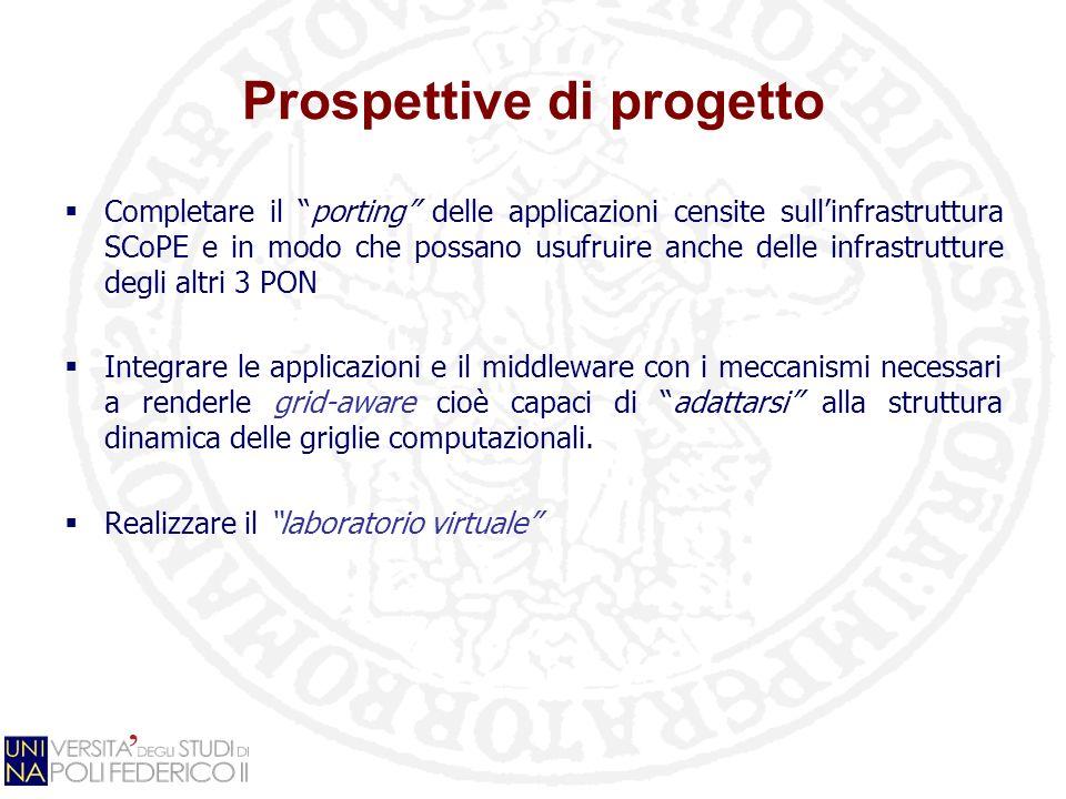 Prospettive di progetto Completare il porting delle applicazioni censite sullinfrastruttura SCoPE e in modo che possano usufruire anche delle infrastr