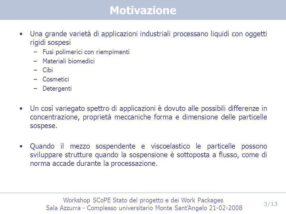 Workshop SCoPE Stato del progetto e dei Work Packages Sala Azzurra - Complesso universitario Monte SantAngelo 21-02-2008 3/13 Motivazione Una grande v