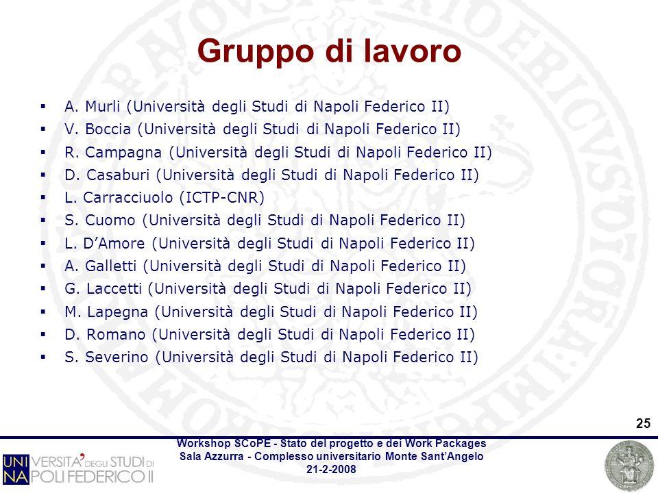 Workshop SCoPE - Stato del progetto e dei Work Packages Sala Azzurra - Complesso universitario Monte SantAngelo 21-2-2008 25 Gruppo di lavoro A.