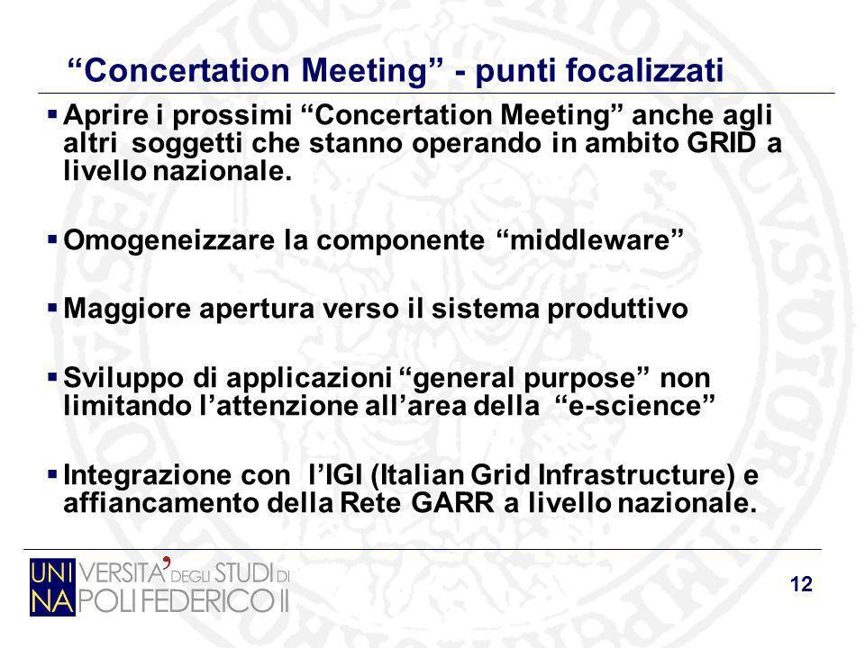 12 Concertation Meeting - punti focalizzati Aprire i prossimi Concertation Meeting anche agli altri soggetti che stanno operando in ambito GRID a live