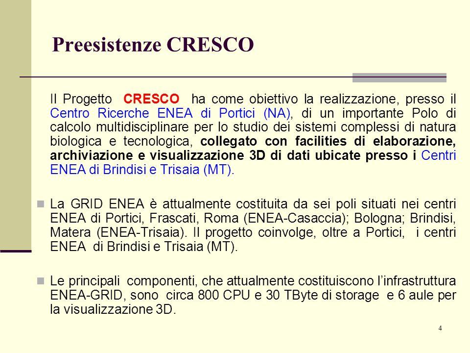 4 Preesistenze CRESCO Il Progetto CRESCO ha come obiettivo la realizzazione, presso il Centro Ricerche ENEA di Portici (NA), di un importante Polo di calcolo multidisciplinare per lo studio dei sistemi complessi di natura biologica e tecnologica, collegato con facilities di elaborazione, archiviazione e visualizzazione 3D di dati ubicate presso i Centri ENEA di Brindisi e Trisaia (MT).