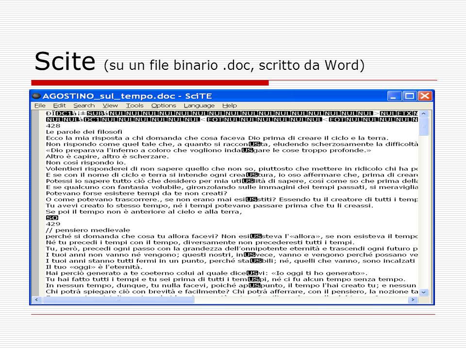 Scite (su un file binario.doc, scritto da Word)