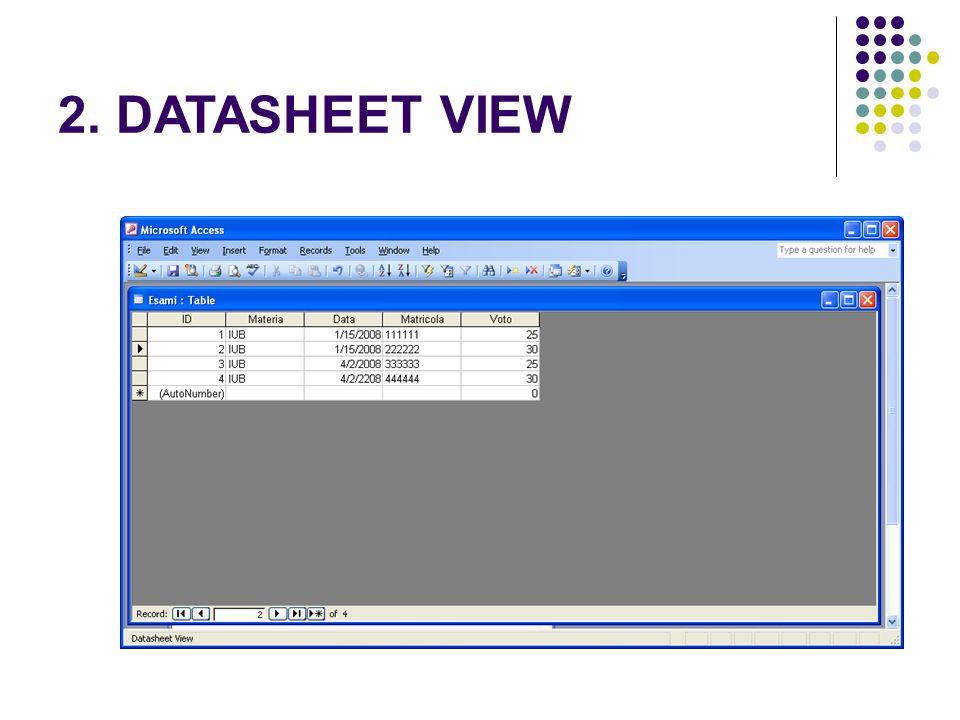 2. DATASHEET VIEW