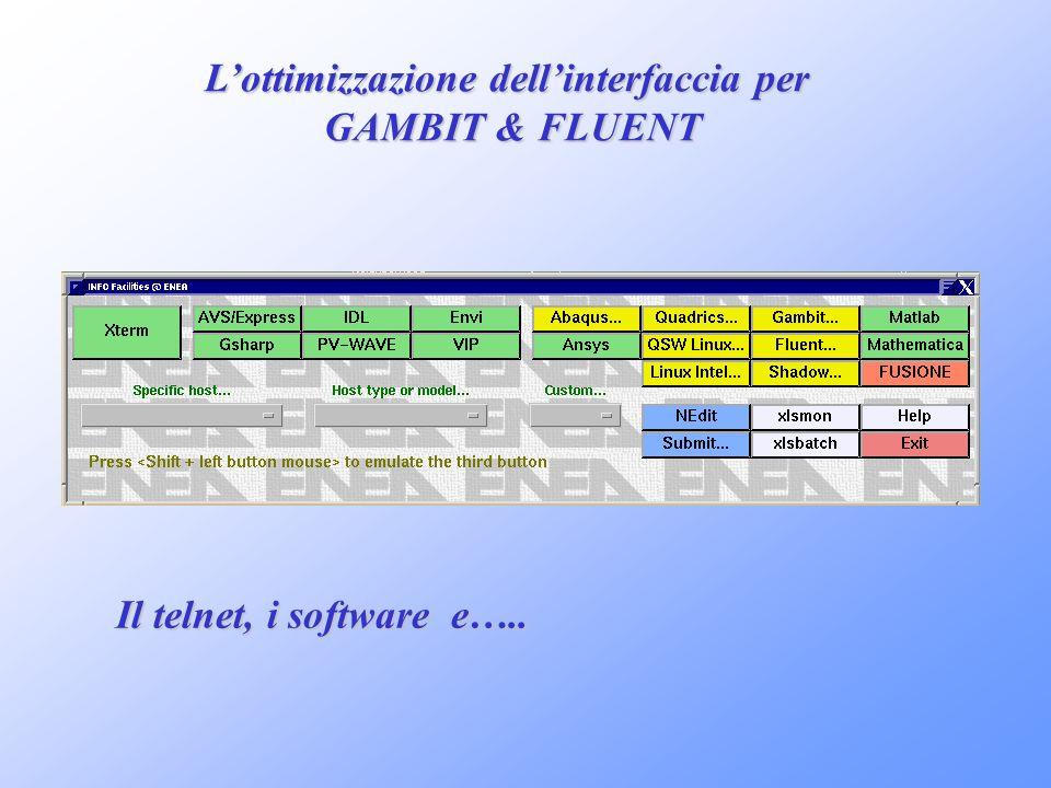 Lottimizzazione dellinterfaccia per GAMBIT & FLUENT Il telnet, i software e…..
