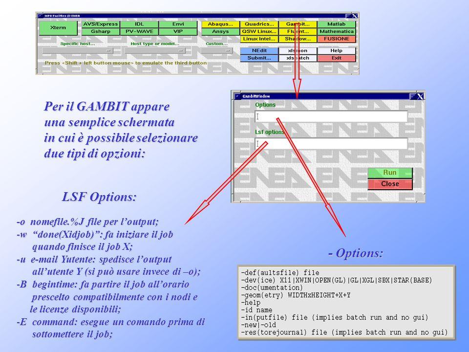 - Options: Per il GAMBIT appare una semplice schermata in cui è possibile selezionare due tipi di opzioni: LSF Options: LSF Options: -o nomefile.%J fi